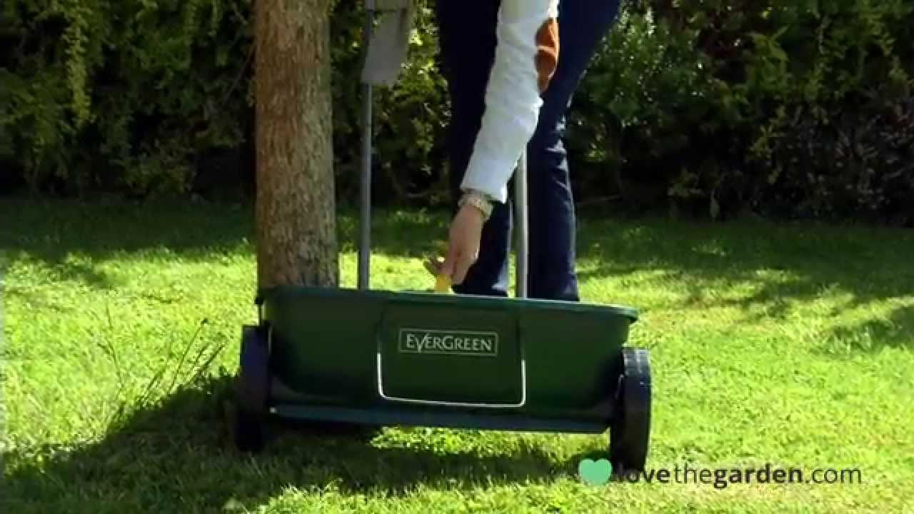 How To Use A Lawn Spreader Youtube