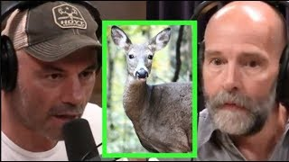 Joe Rogan - Wildlife Biologist on Deadly Deer Disease!