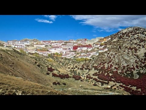 Panchen Lama holds Buddhist services in Tibet (Recorded)
