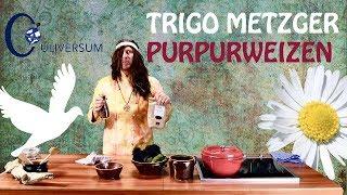 Purpurweizen mit Grünkohl aus Trigo's Rezeptwelt