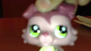 lps holiday Thumbnail