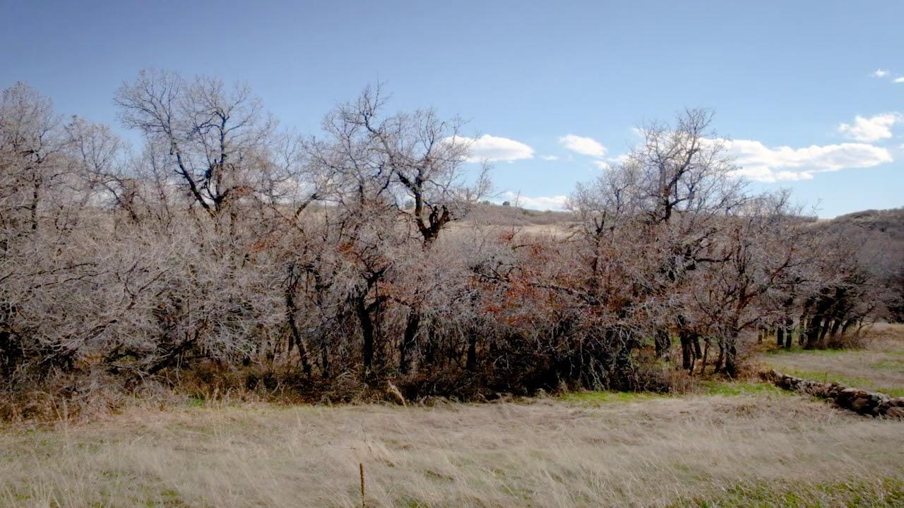 0.32 Acres in Colorado City With Mountain Views