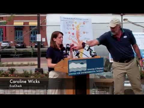 2011 Chesapeake Bay Report Card Release Event (Full Presentation)