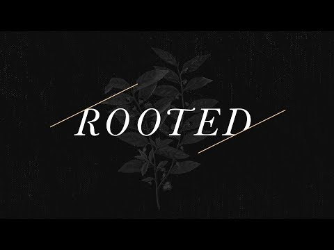 Rooted pt. 7 | Fruitful Roots