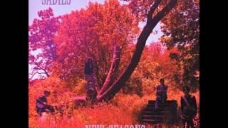 "The Sadies ""New Seasons"", 2007.Track 03: ""What's Left Behind"""