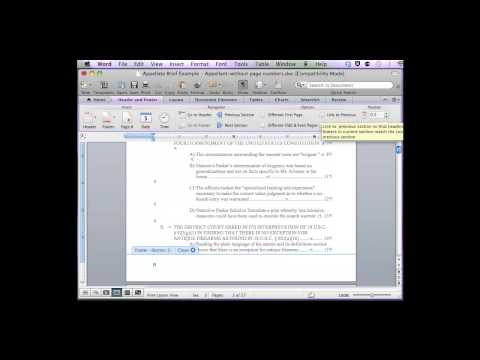 Insert Sections with Different Page Numbers (Mac)