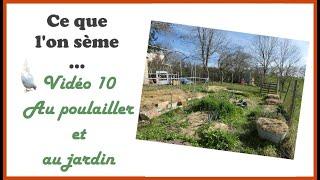 # 10 : Une surprise au poulailler + les plantations et les semis de saison