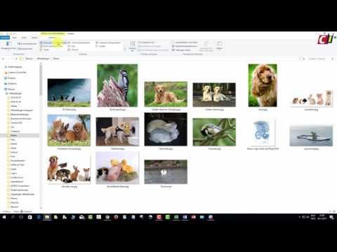 Weergave Windows Verkenner