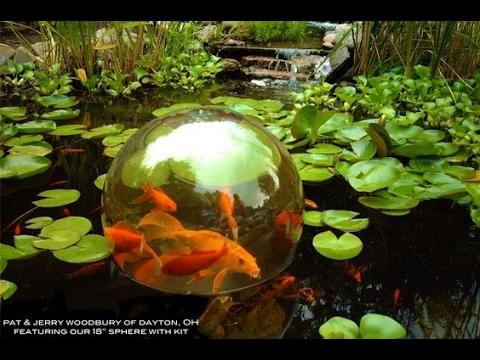 Inverted aquarium ideas youtube for Inverted fish tank