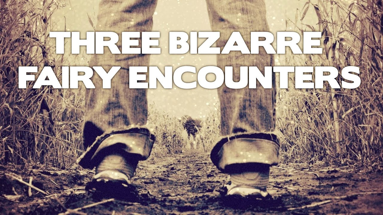 Three True Weird Encounters With Real Fairies True Fairy Encounter Stories From Reddit