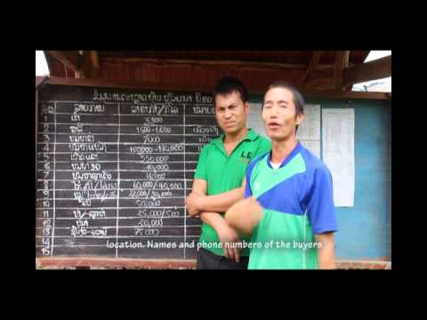 Lessons from UDIN 3 Agriculture Market Information System AMIS