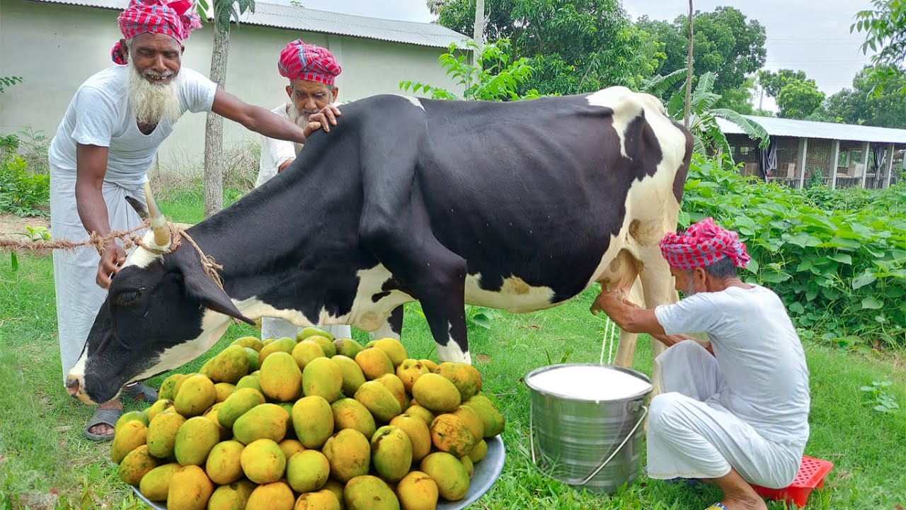 Download Milk, Mango & Flattened Rice - Traditional Summer Food For Physically Challenged Special People