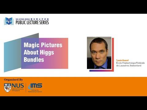 IMS Public Lecture: Magic Pictures About Higgs Bundles