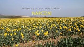 Narcizai (dokumentinis filmas)