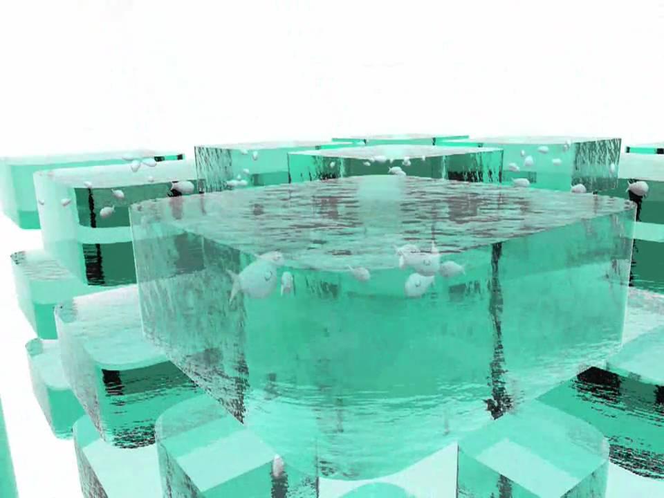 Inovapeixe software para piscicultura youtube for Tanques para cachamas