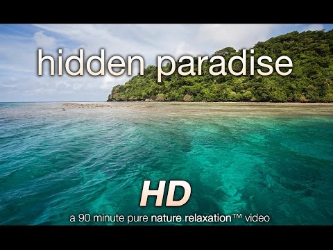 """Hidden Paradise"" Fiji Nature Relaxation™ + Healing Sacred Ratio Music 90 MIN HD THERAPY 1080p"