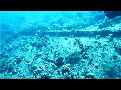 The Wrecks Of The Red Sea