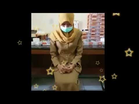Bokeh Video PNS Full HD Terbaru