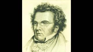 Franz Schubert: Sinfonie Nr. 5 B-Dur D 485 / 1. Satz