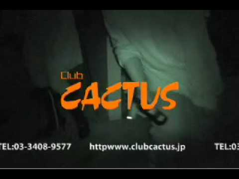 CLUB CACTUS CM 2008