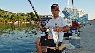Pole Fishing - Απίκο σε λιμάνι για κεφάλους