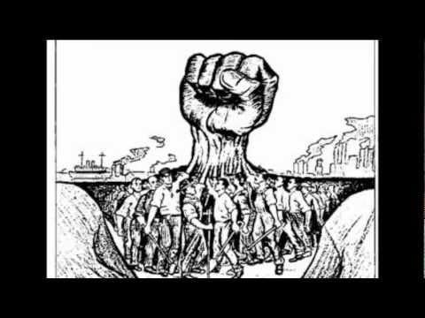 Artigo 29 dos direitos humanos