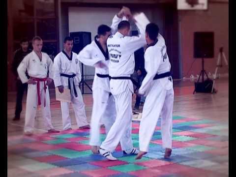 Taekwondo Demonstration Puma