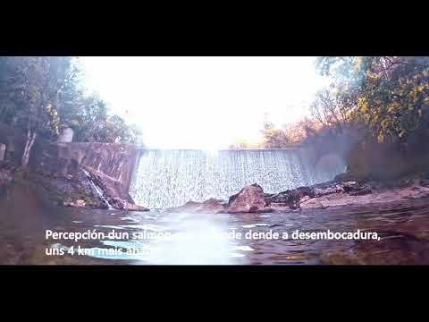 Pladever difunde un vídeo para pedir el cierre de la Presa do Inferno