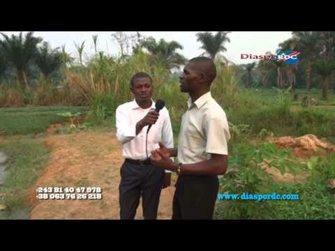 Art et metier: bolanda richesse ya village KOKO DINSUSU, regardez !
