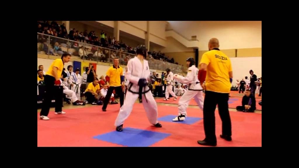 Download 2. Europameistertitel im Taekwon-Do an Thorsten Grimm