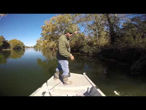 Lower Colorado River (Texas),  Guadalupe and Largemouth Bass Fishing