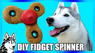 DIY FIDGET SPINNER DOG TREAT | DIY Dog Treats | Snow Dogs Snacks 73