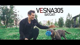 VESNA305 - ВАТСАП (ПРЕМЬЕРА клипа) смотреть онлайн в хорошем качестве бесплатно - VIDEOOO