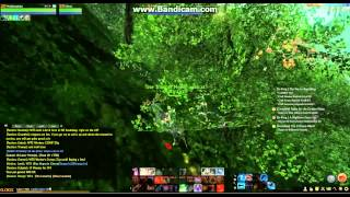 Archeage, TRADE BOT ROUTE gweonid to two crowns