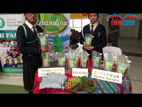 Colegio Santa Teresita - Detergente Ecológico Ninandina
