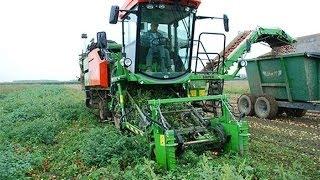 Зерноуборочные Комбайны(Зерноуборочный комбайн Claas уборка урожая пшеницы вечером Зерноуборочный комбайн Claas уборка урожая пшеницы...., 2016-06-30T10:32:43.000Z)