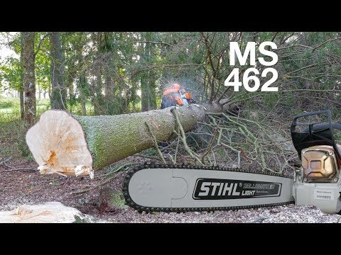 First Review Of Stihl MS 462 - 72cc Chainsaw