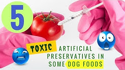 5 TOXIC Artificial Preservatives in Some Dog Foods