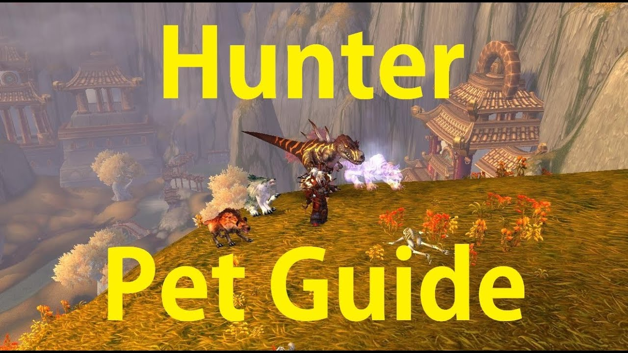 hunter pet guide pve and pvp use your buffs world of warcraft rh youtube com pet guide wow 3.3.5 pet guide wow legion