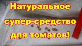 Обработка семян это залог хорошего урожая!