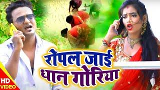 #VideoSong #रोपल जाई धान गोरिया - Ropal Jayi Dhan Goriya - Pravin Yadav Bagi & Sushma Bharti