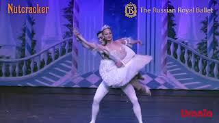 The Russian Royal Ballet Nutcracker Trailer