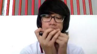 Belajar harmonika diatonik - Perahu Kertas
