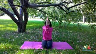 Растяжка плеч и упражнение для гибкости спины!(Скачать видео-курс «ЙОГА-ТЕРАПИЯ ДЛЯ НАЧИНАЮЩИХ» можно тут: http://yogadudina.ru/vHrXSpfWkv0 Мини-комплекс для растяжки..., 2014-12-09T16:55:05.000Z)