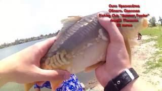 каналы про рыбалку фильмы