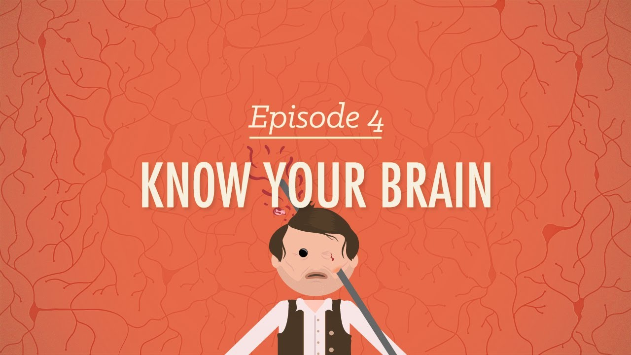 Meet Your Master: Getting to Know Your Brain - Crash Course ...