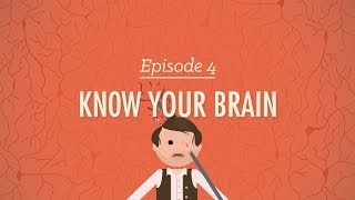 Repeat youtube video Meet Your Master: Getting to Know Your Brain - Crash Course Psychology #4