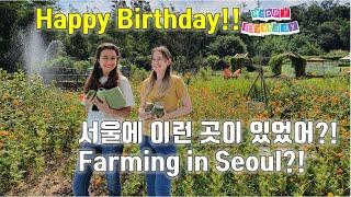 [국제커플] 생일인 러시아 아내도 놀란 서울의 숨겨진 …