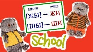 Учительница заболела. Кто будет вести уроки в Школе Басиков / Семейка Басиков и Мисс Фаина