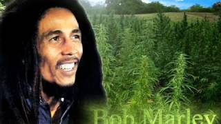 Bob Marley and the Wailers - Three Little Birds
